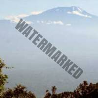 kilimanjaro-machame-chris2012-05