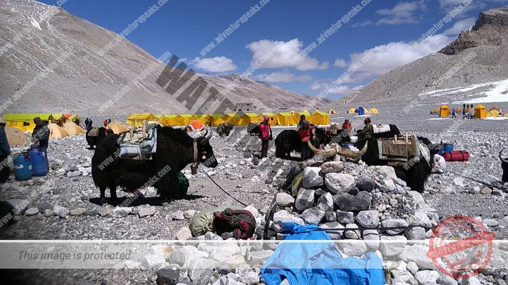 Everest-2019-DG (14)